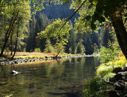 The Impact of Climate Change on Rivers